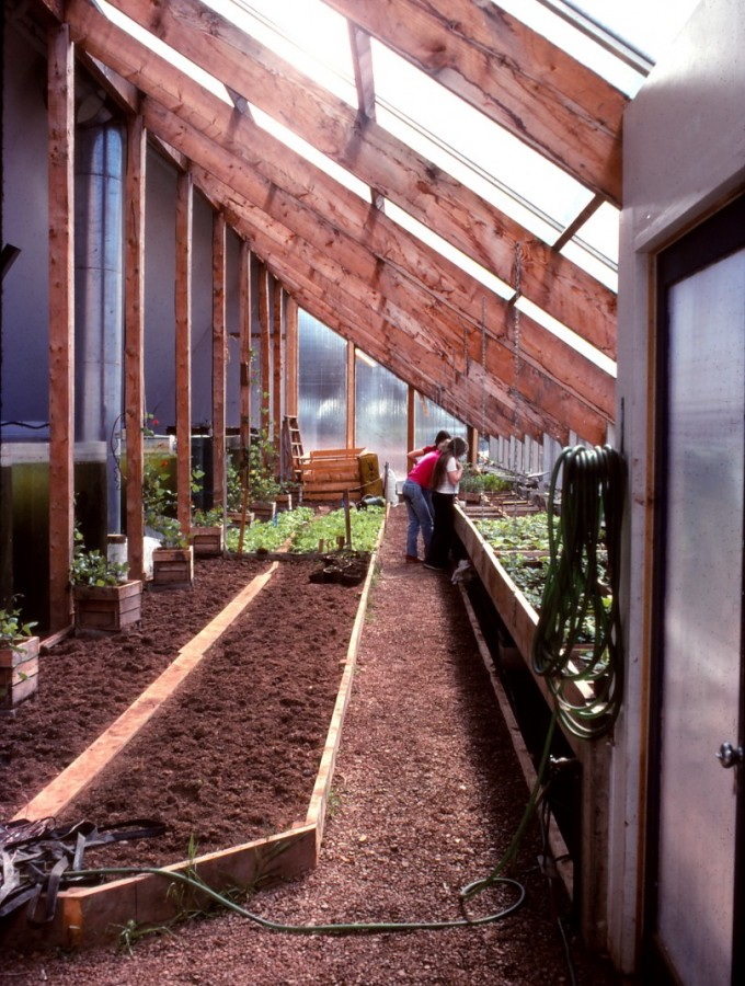 planting crops in the greenhouse